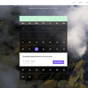 onschedule-retail-booking-theme-01.jpgonschedule - retail booking theme 01