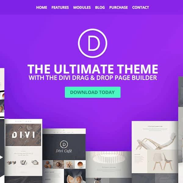 divi page builder wordpress plugin 02