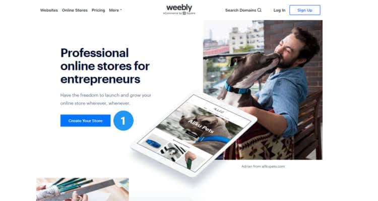 weebly online store 21