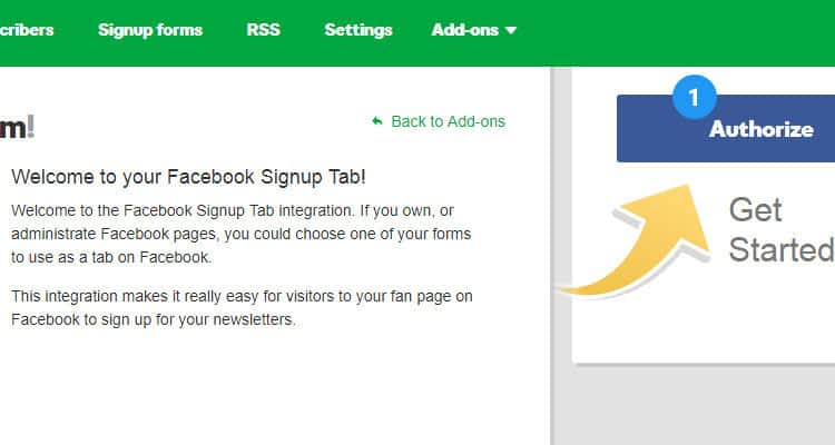 Add newsletter signup form to Facebook page 03